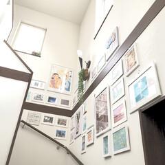 ギャラリー/玄関インテリア/北向き/階段/はじめてフォト投稿/フォロー大歓迎/...