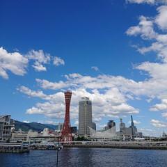 風景/山/海/神戸タワー/モザイク/神戸ハーバーランド/... THE  神戸‼️  って感じですよね~…