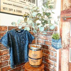 Tシャツ/GU/樽/ニトリ/おすすめアイテム/雑貨/... ニトリの樽~‼️ 高さ20センチほどで小…
