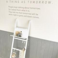 八幡ねじ/収納/DIY/インテリア/壁掛け/マイルーム おしゃれな壁とマッチする、シンプルなはし…