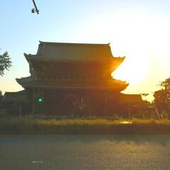 風景写真/風景/女子会/お散歩/おでかけ/京都/... 東本願寺 夕方に友人とお散歩 夕日をキレ…