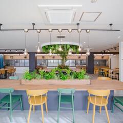 北欧インテリア/リノベーション/グリーン/天井緑化/IKEA/無印良品/... 今日はどこに座ろうかな♪ ワークスペース…(1枚目)