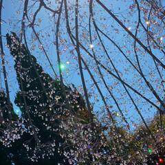 旅行/息抜き/芦ノ湖/箱根ガラスの森美術館/ロマンスカー/温泉/... とっても久しぶりの更新🔄 箱根に行って来…(5枚目)