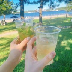 海の公園/モヒート/バーベキュー/summer/夏/BBQ/... やはり今年は全然夏っぽいことができなくて…