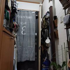 ワトコ社 ワトコオイル浸透性木材用塗料 エボニー 1L W-10(ペンキ、塗料)を使ったクチコミ「「玄関収納、靴棚完成!」なのだワン!🐾 …」(3枚目)