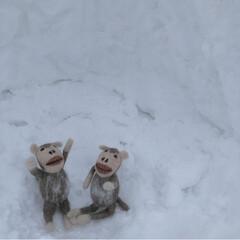 子どもと暮らす/フォロー大歓迎/冬/お気に入り 大雪に喜ぶ子ども達はリアルにこんな状態で…