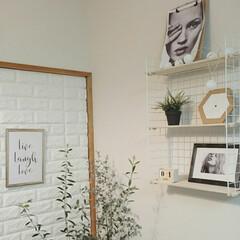 ワイヤーラティス/ワイヤーネット/ウォールシェルフ/グリーン/DIY/雑貨/... 無機質なワイヤーやレンガ風の壁にもグリー…