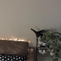 リビング/ジュエリーライト/インテリア/雑貨/クリスマス ソファーの後ろにジュエリーライトを仕込ん…