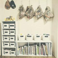 おもちゃ収納/ぬいぐるみ収納/子供部屋/ニトリ/ダイソー/収納 ニトリのカラーボックスと100均(主にダ…(1枚目)