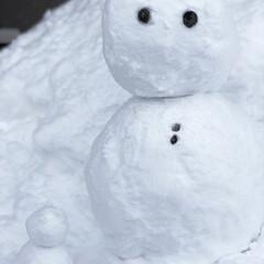 子供のいる暮らし/ゆきだるま/フォロー大歓迎/冬/風景 つい夢中になってしまいました(笑) 子ど…