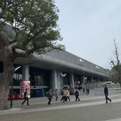 散歩 上野に行ってきました😊(5枚目)