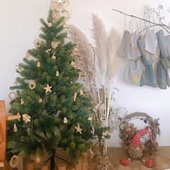 アドベントカレンダー/クリスマス