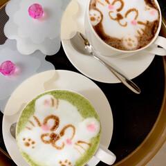 オリジナルドリンク/ラテアート/ホットココア/抹茶チーノ/にゃんこ同好会/猫カフェ/... 寒い1日はほっと一息✨  温かいお飲み物…