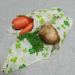 エコ生活/ミツロウラップ/蜜蝋ラップ/生活の知恵/食材ストック/買い置き/... 蜜蝋ラップ  残った野菜を包んだり 飲み…