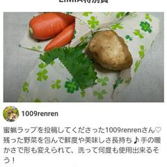 おうちご飯/電気ケトル LIMIA特別賞の モダンデコ電気ケトル…