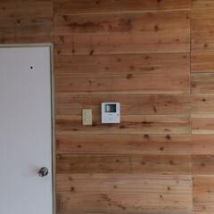 「賃貸Diy  せっせと杉板をみがいて板壁…」(2枚目)