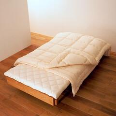 インビスタジャパン/寝具/ダニ/アレルギー/インテリア/睡眠 洗える布団とラグやカーペットでハウスダス…