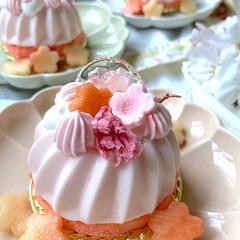 スイーツ/春の一枚 🌸桜餡のムース🌸 桜餡の風味で和菓子のよ…(1枚目)