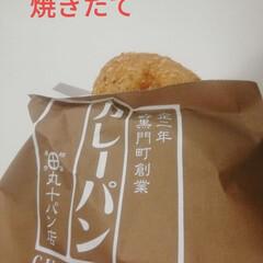 カレー/パン カレーパンが突然食べたくなった。
