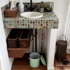 植物/グリーン/おうち/古道具/古物/アンティーク/... * 造作手洗いに 苔テラリウム : 瓶の…