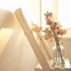 スターフィルター/キッチン/キッチン掃除/換気扇/換気扇フィルター/コンロ周り/... 綺麗なキッチンには、 季節のお花を飾りた…