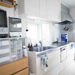 スターフィルター/家事/キッチン/掃除/換気扇/コンロ/... 10年後も美しいキッチンを保つためには、…