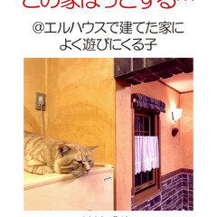 フォロー大歓迎/不動産・住宅/工務店/住まい/猫/猫と暮らす/... エルハウスで家を建てられた、OBさんから…