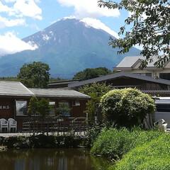 富士山/忍野八海/旅行/風景/令和元年フォト投稿キャンペーン 富士山
