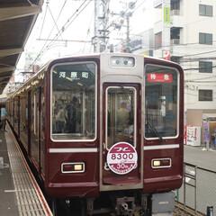 パシャリ/おでかけワンショット/阪急電車/復刻車両/懐かしい 阪急電車のエンブレム復活車両 昔が懐かし…