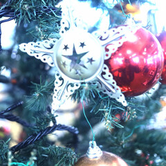 三好俊明/クリスマス2019/お星さまから/メッセージ/メリークリスマス/ツリー お星さまからメリークリスマス
