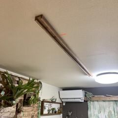 リビングインテリア/リビング/照明デザイン/照明計画/照明DIY/ライティングレール/... 過去DIYの紹介です。   僕の趣味のビ…(4枚目)