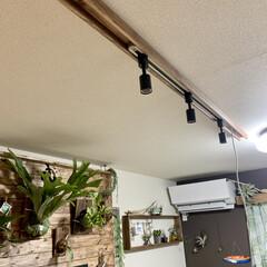 リビングインテリア/リビング/照明デザイン/照明計画/照明DIY/ライティングレール/... 過去DIYの紹介です。   僕の趣味のビ…(2枚目)