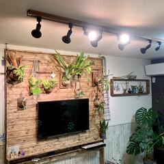 リビングインテリア/リビング/照明デザイン/照明計画/照明DIY/ライティングレール/... 過去DIYの紹介です。   僕の趣味のビ…
