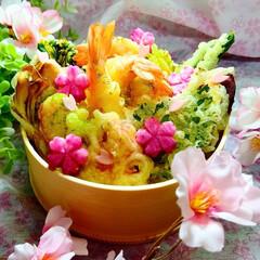 桜弁当/春弁当/天丼弁当/天丼/お弁当 天丼弁当