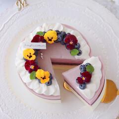 cheesecake/レアチーズケーキ/チーズケーキ/お菓子作り/ムースケーキ/ムース/... ブルーベリームースケーキ  お花のリー…(4枚目)