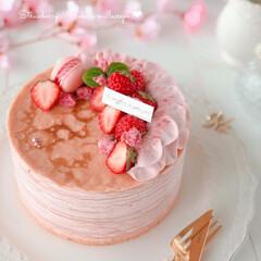 cake/STRAWBERRY/sweets/Cafe/SAKURA/手作りスイーツ/... 🌸苺と桜のミルクレープ  桜餡クリームと…
