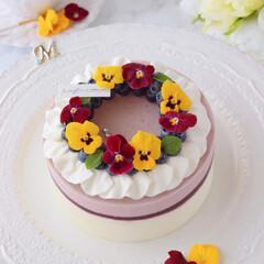 cheesecake/レアチーズケーキ/チーズケーキ/お菓子作り/ムースケーキ/ムース/... ブルーベリームースケーキ  お花のリー…(1枚目)