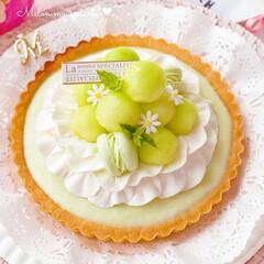 デザート/おいしい/マカロン/おやつ作り/おやつ/お菓子作り/... 🍈メロンムースタルト  メロンムースケー…