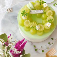 お菓子作り好きな人と繋がりたい/sweets/cake/Cafe/ケーキ/お花が好き/... 🍇贅沢ぶどうのレアチーズケーキ シャイン…(4枚目)