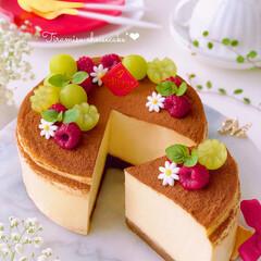 ティラミス風/ティラミスケーキ/チーズケーキ/ティラミス/おうちカフェ/手作りスイーツ/... 🍰ティラミス風チーズケーキ  ティラミス…