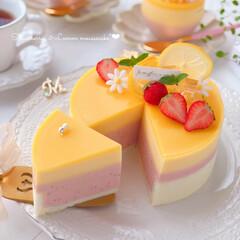 Cafe/cake/sweets/LEMON/STRAWBERRY/おうちおやつ/... 🍓いちご&レモンムースケーキ🍋  前回の…