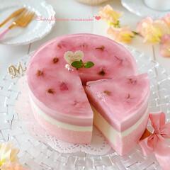 sweets/Cafe/cake/SAKURA/おうちカフェ/手作りスイーツ/... 🌸桜ムースケーキ  ぷるぷるな桜ゼリーの…