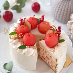 Apple/Christmas/cake/sweets/手作りおやつ/手作りデザート/... 🍎キャラメルクリームのショートケーキ  …(2枚目)