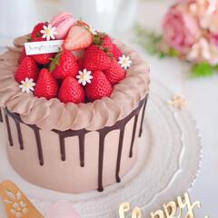 Cafe/birthdaycake/sweets/STRAWBERRY/chocolate/cake/... 🎂チョコレートケーキ  萌え断はビミョー…(2枚目)