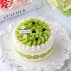 デコレーションケーキ/萌え断/シャインマスカットケーキ/シャインマスカット/ショートケーキ/cake/... 💚シャインマスカットケーキ  シャインマ…(1枚目)