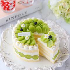 デコレーションケーキ/萌え断/シャインマスカットケーキ/シャインマスカット/ショートケーキ/cake/... 💚シャインマスカットケーキ  シャインマ…(2枚目)