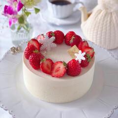 STRAWBERRY/cake/Cafe/sweets/いちごケーキ/手作りデザート/... 🍓ホワイトチーズムースケーキ  大好きな…