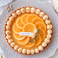 tarte/Cafe/cake/ORANGE/sweets/手作りおやつ/... 🍊オレンジタルト  オレンジカードに オ…
