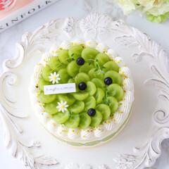 デコレーションケーキ/萌え断/シャインマスカットケーキ/シャインマスカット/ショートケーキ/cake/... 💚シャインマスカットケーキ  シャインマ…(4枚目)
