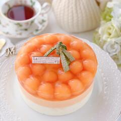 Cafe/cake/melon/sweets/おうちおやつ/萌え断/... 🍈メロンムースケーキ  赤肉メロン1個分…(2枚目)